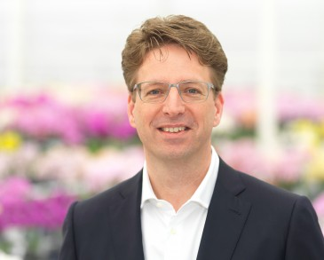 Iwan van der Knaap, Director