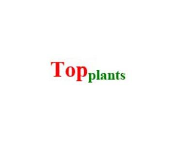 TopPlants
