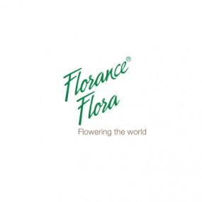 Florance Flora