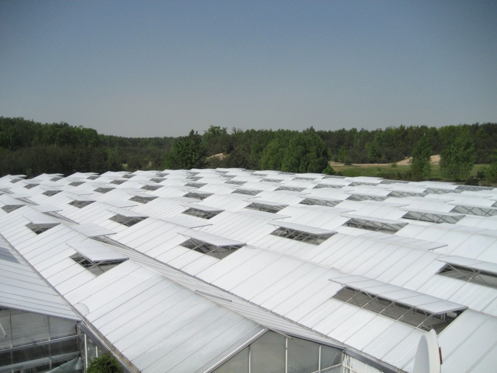 Greenhouse chalking