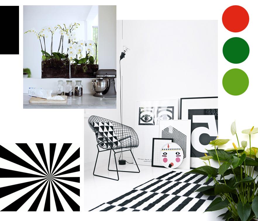 Diseño gráfico blanco y negro