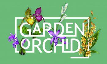 Garden Orchid opnieuw gestyled
